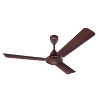 Eveready 1200 VANILO Brown Ceiling Fan