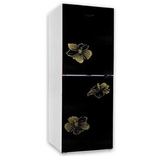 Vision VSN GD Refrigerator RE-222L Mirror Lotus FL-TM