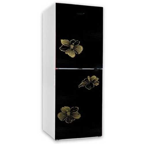 Vision VSN GD Refrigerator RE-252L Mirror Lotus FL BM