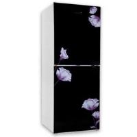 Vision VSN GD Refrigerator RE-262L Mirror Purple FL-TM